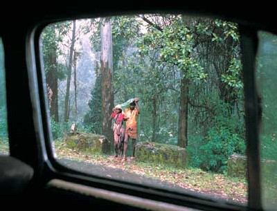 Raghubir Singh, un photographe indien mondialement connu