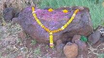 Les traditions floristiques de l'Inde en peril. La coupable: la fleur coupée.